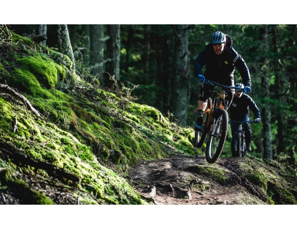 Rumblebikes-Transition Sentinel Carbon GX Loam Gold-Mountain